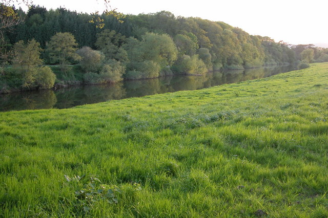 River Severn by Cliffey Wood