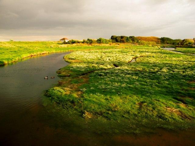 Salt marsh at Newburgh