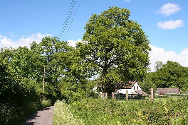 West Buckland: nearing Bridge Cottage