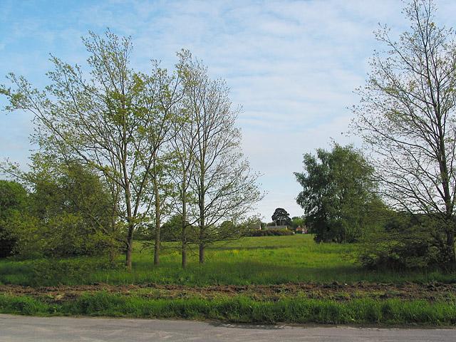 Pennington Common, Lymington