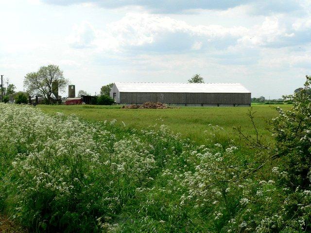 Cave Common Farm