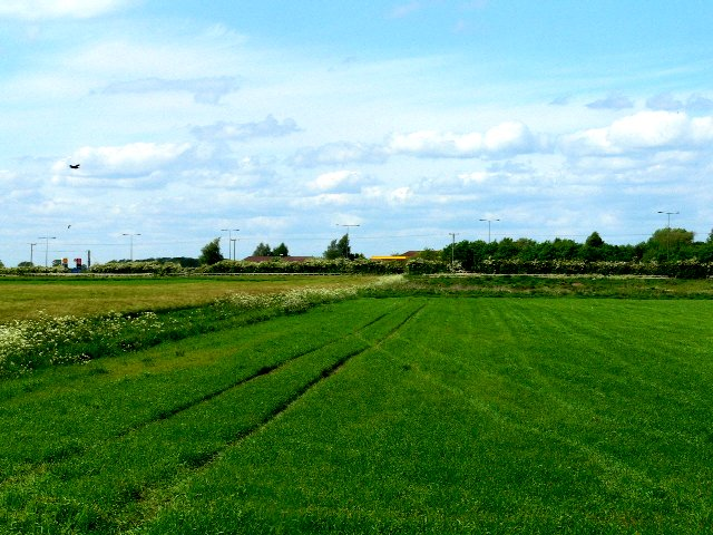 Farmland South of the A63