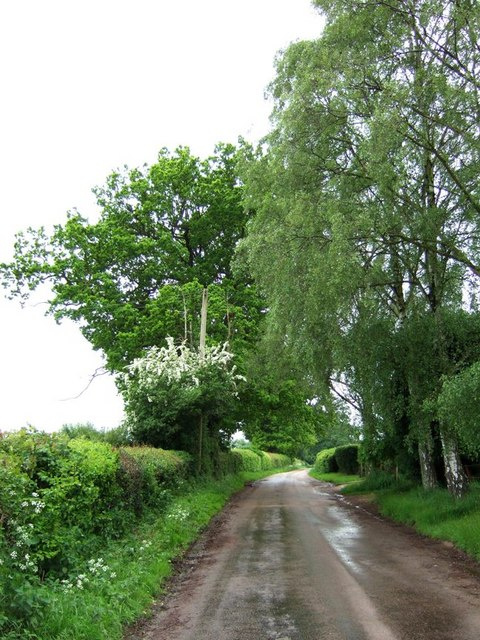 Ledgemore Lane (view SW)