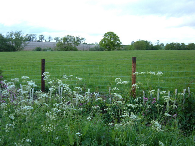 Farmland between Welford and Naseby