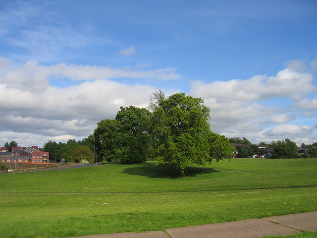 Recreation ground at Staple Lodge Road