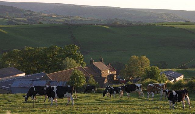 Shortwaite Farm