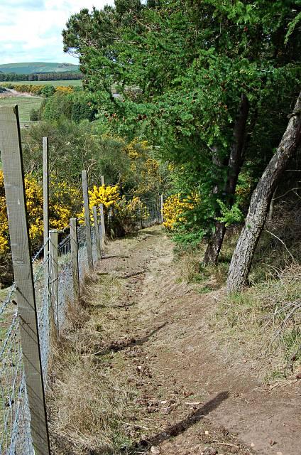 Brackmont Path