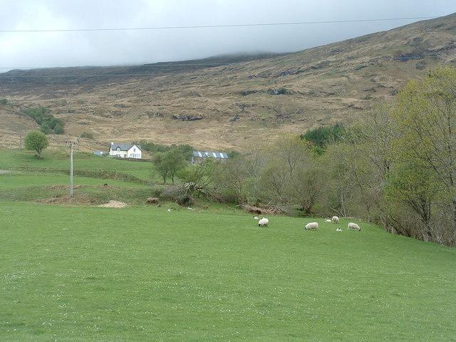 Farm at Corynachenchy