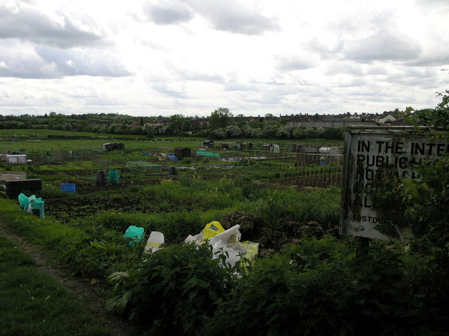 Ibstock Allotments