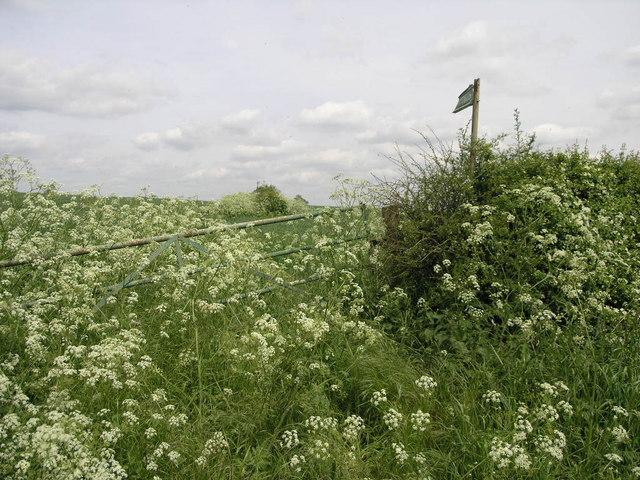 Footpath to Rothwell