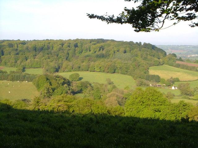 Westgate Hill from Gittisham Hill