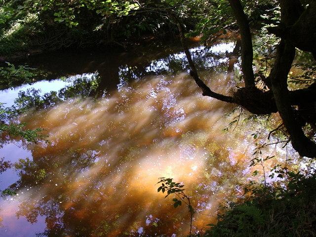 River Rye