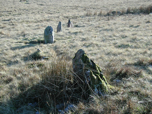 Trecastle Mountain Stone Circle detail