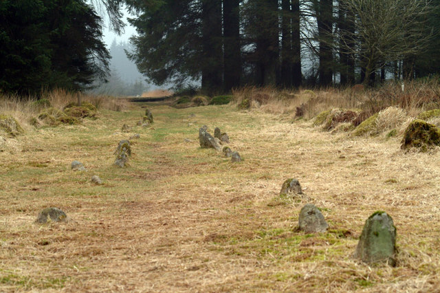 Fernworthy Stone Row