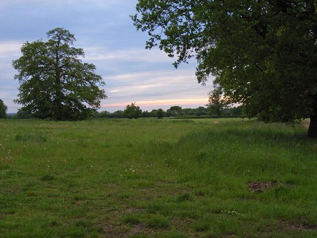 Farmland at Lyde Green