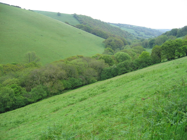 West Looe valley