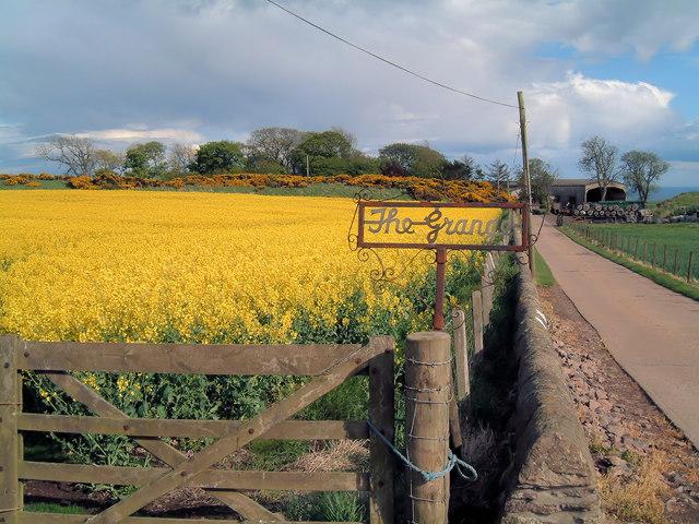 Grange Farm, Inverbervie