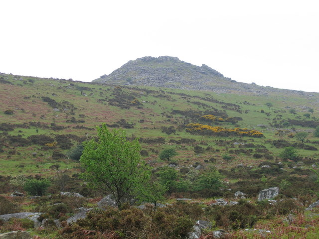 Sharp Tor from Bearah Common