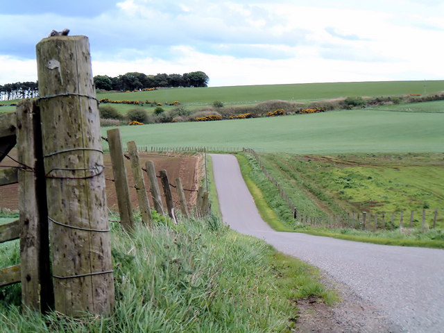 On the back road to Inverbervie
