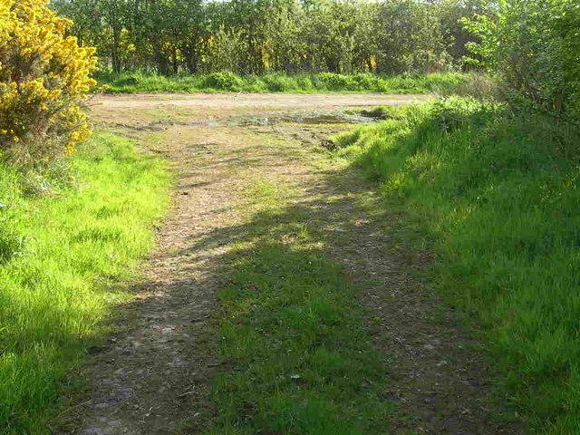 Track Junction