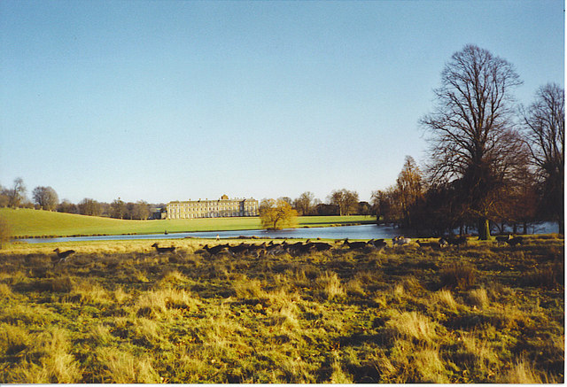 Petworth Deer Park, Lake and House.