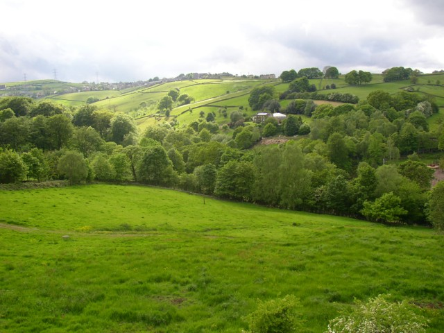 Meadow and the Holywell Brook valley, Old Lindley