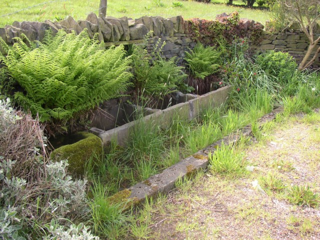 Water trough, Jagger Green, Old Lindley