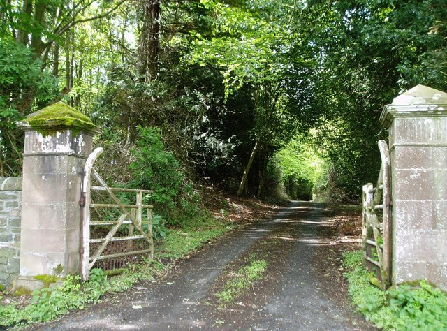 Driveway, Kippilaw