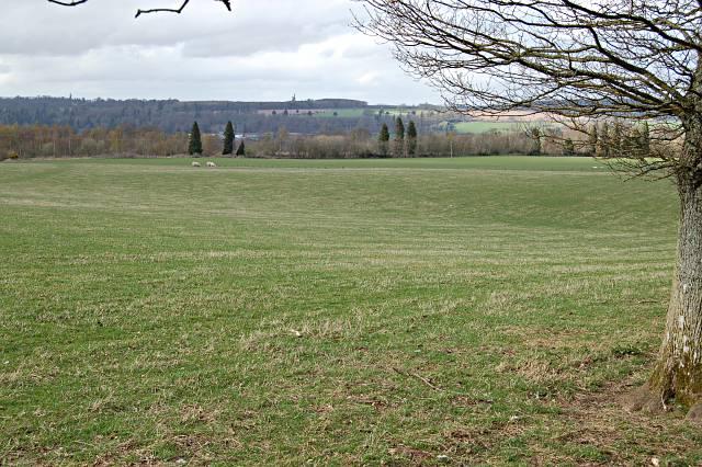 Farmland by Craighall