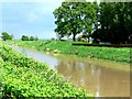 SE8432 : Market Weighton Canal at Welburn House by Roger Gilbertson