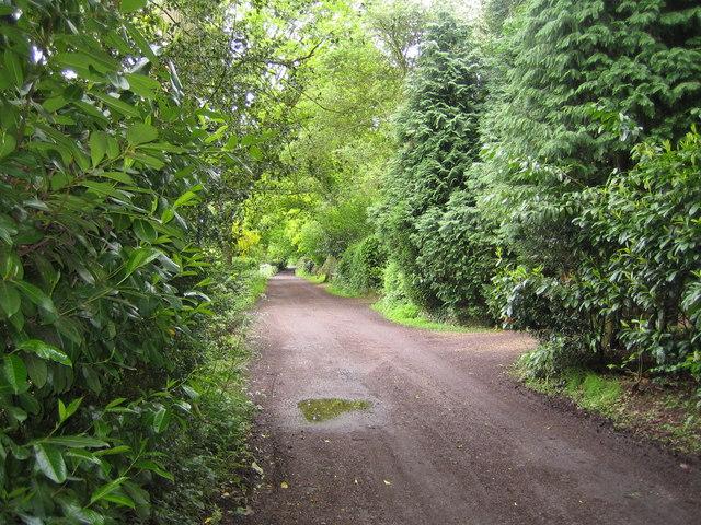 Bovingdon: Shothanger Way