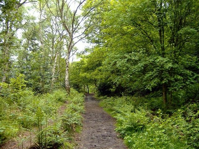 Middle Walk, below Helsby Crag