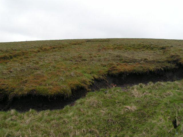 Old peat diggings, Dane Bower