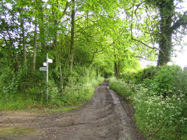 Bovingdon: Stoney Lane