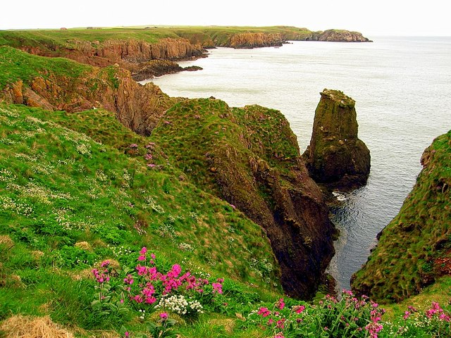 Cliff Scenery North of Cruden Bay