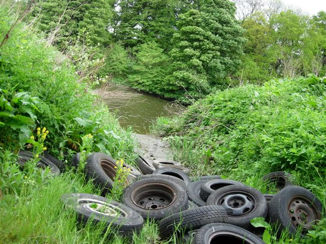 Old car wheels dumped by the River Wear