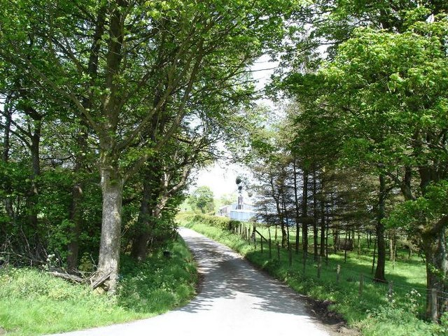 Welsh lane in the sunshine