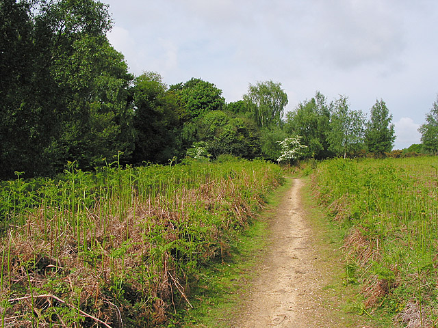 Footpath at Foulford, Ringwood