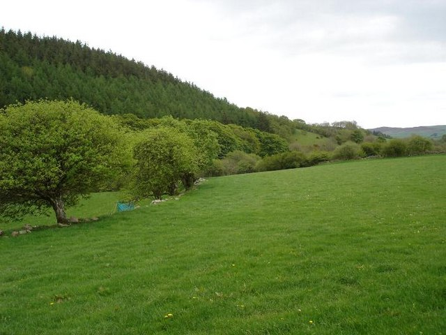 Edge of Clocaenog