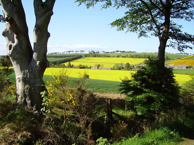 Farmland, Press Mains