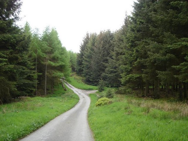 Clocaenog lane
