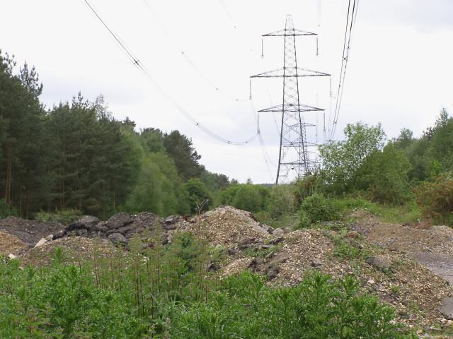 Power lines running west through Cloven Hill Plantation
