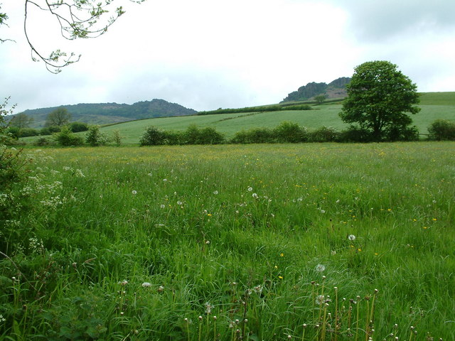 View From Footpath