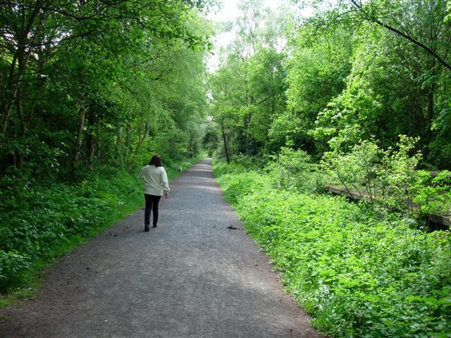 The Derwent Walk