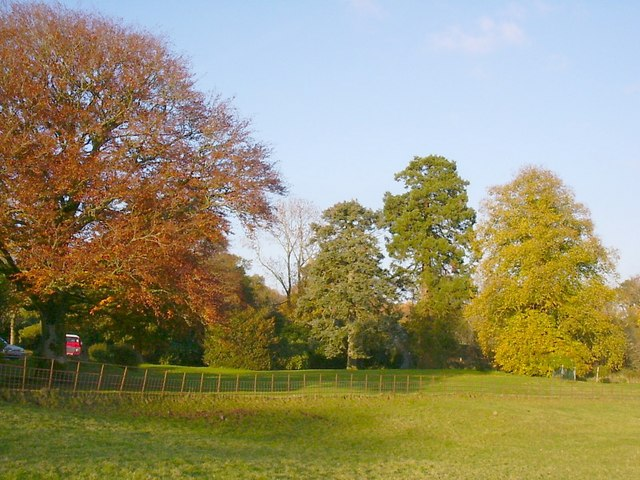 Autumn Trees at Glenlair