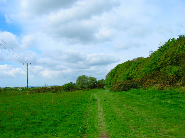 Footpath next to Cooden Wood