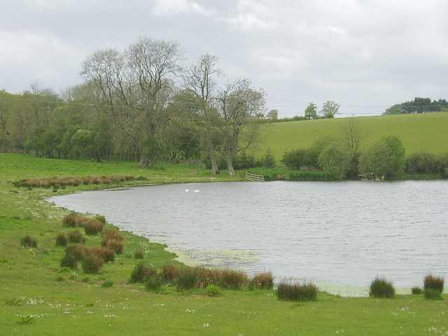 Pond, Cotfield