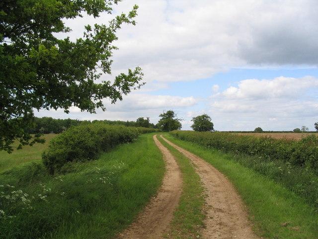 Track  to Hale House Plantation, Grimsthorpe Estate