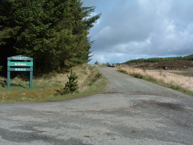 Ardmore forest track