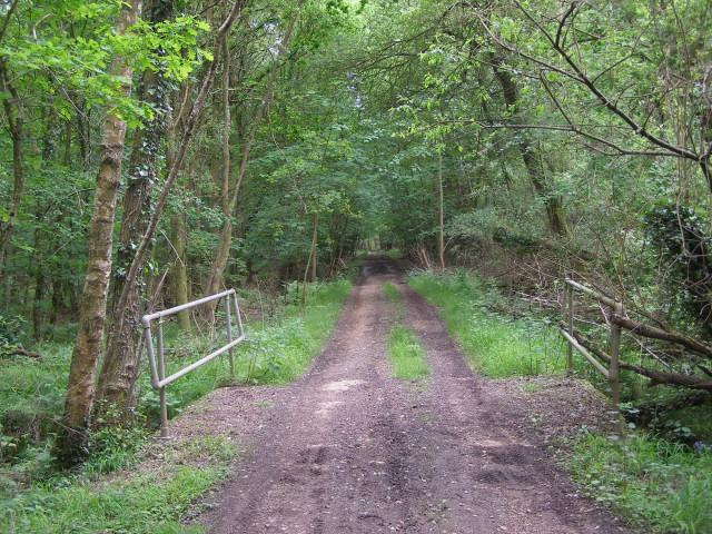 Footbridge and byway towards Nomansland